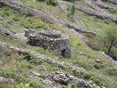 Trim and cistern in the fields above Velo Grablje