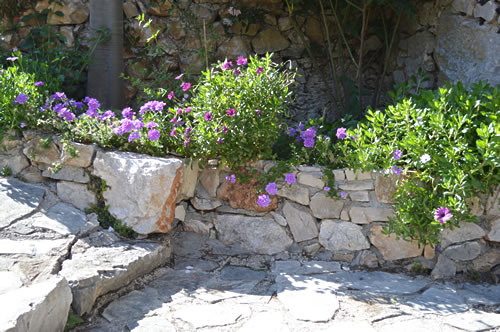 Flowers in a stone planter