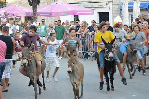The leaders in the donkey race