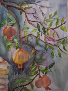 Sunlit Pomegranates by Mary Paquet