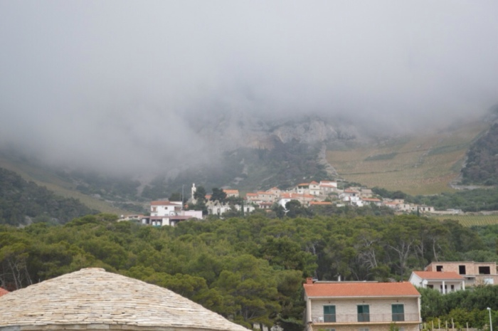 Vineyards above Sveta Nedljelja disappearing into the clouds