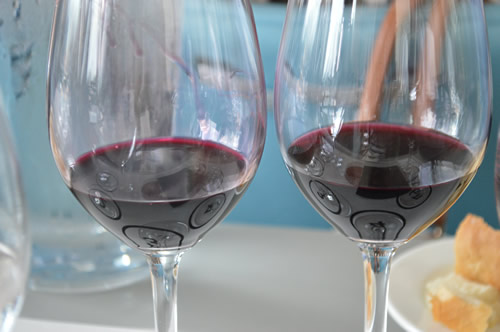 Comparing red wines - Teran and Refošk