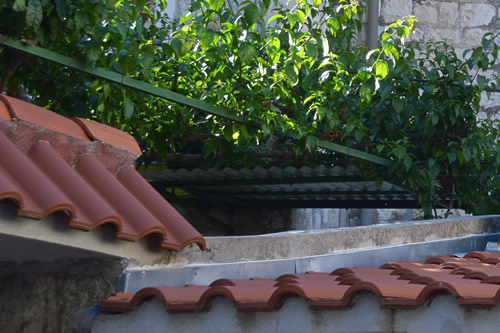Modern tiles, old roman shape, Split