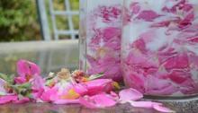 Layered petals and sugar