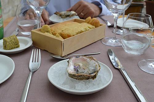 Ston oyster