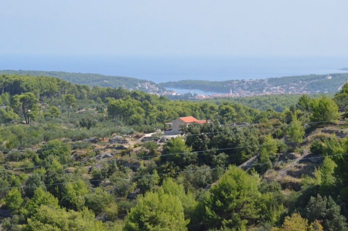 View of Jelsa