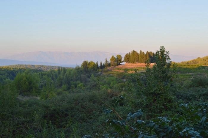 View from Dvor Duboković