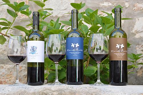 Plavac wines