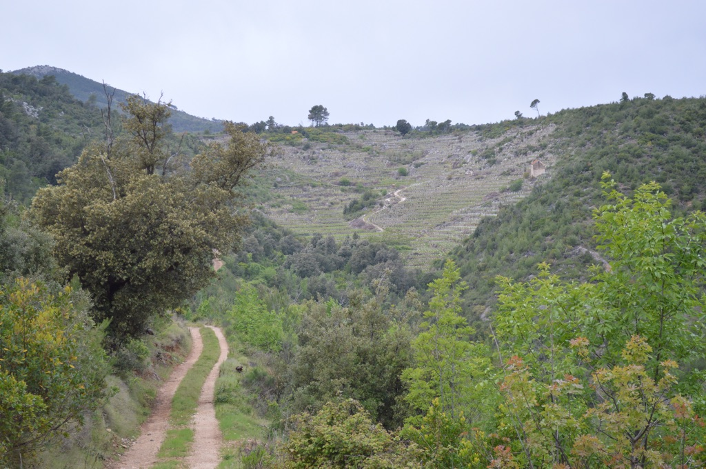 High protected valley
