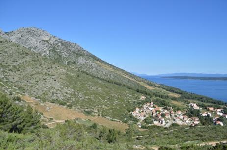 Vineyards above Ivan Dolac