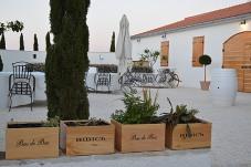 Bibich courtyard