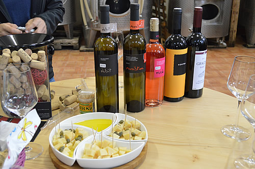 Wine and cheese tasting