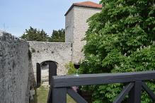 Benković castle