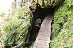 Entrance to the cave