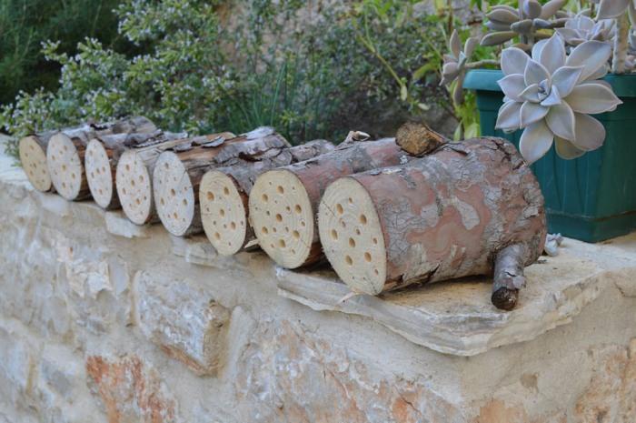 Bee hotel logs