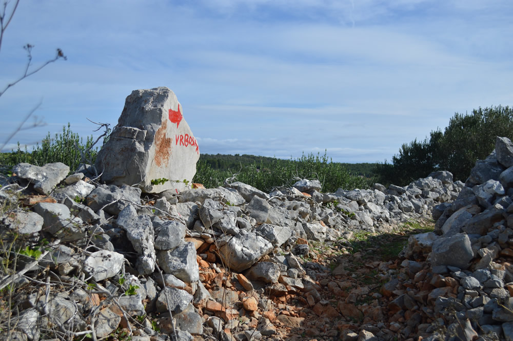 This way to Vrboska