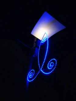 Fish lights