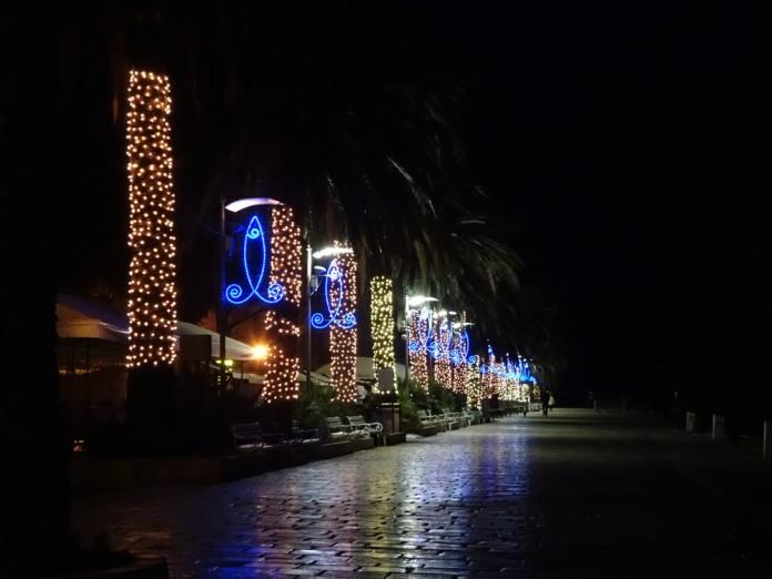 Festive palm trees