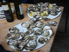 Plates of oysters