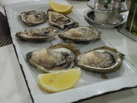 Oysters!