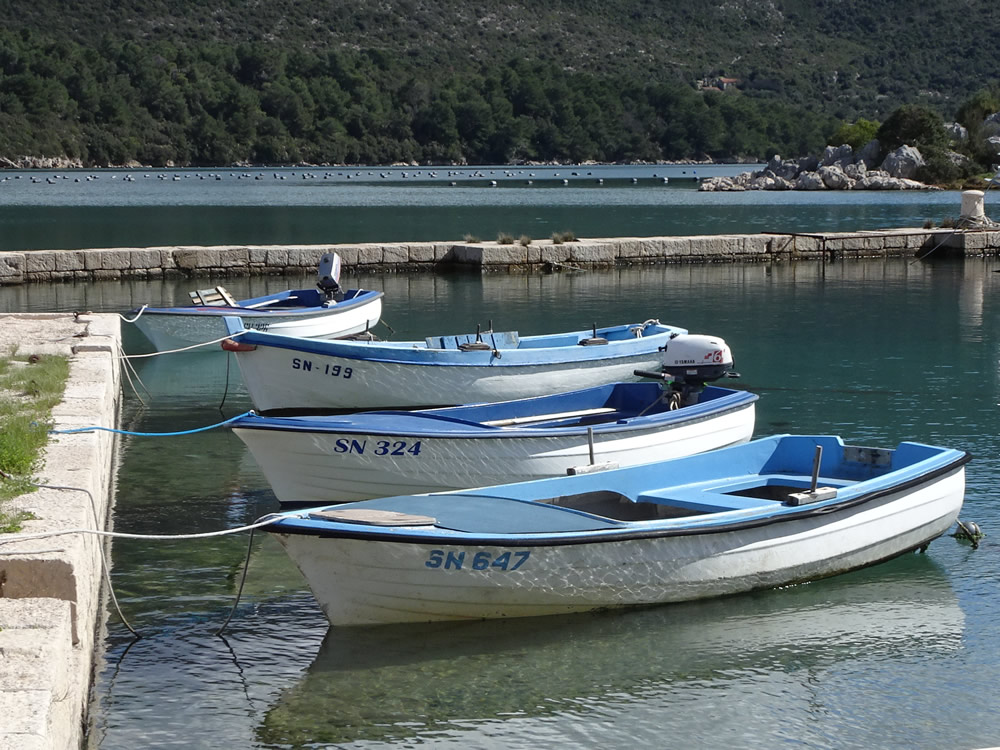 Blue boats in the sun