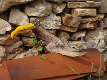 Tata's toucan