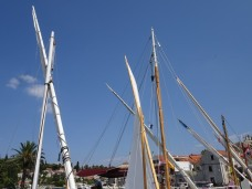 Jarbol - Dalmatian mast