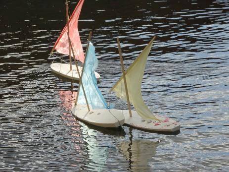 Kid's regatta
