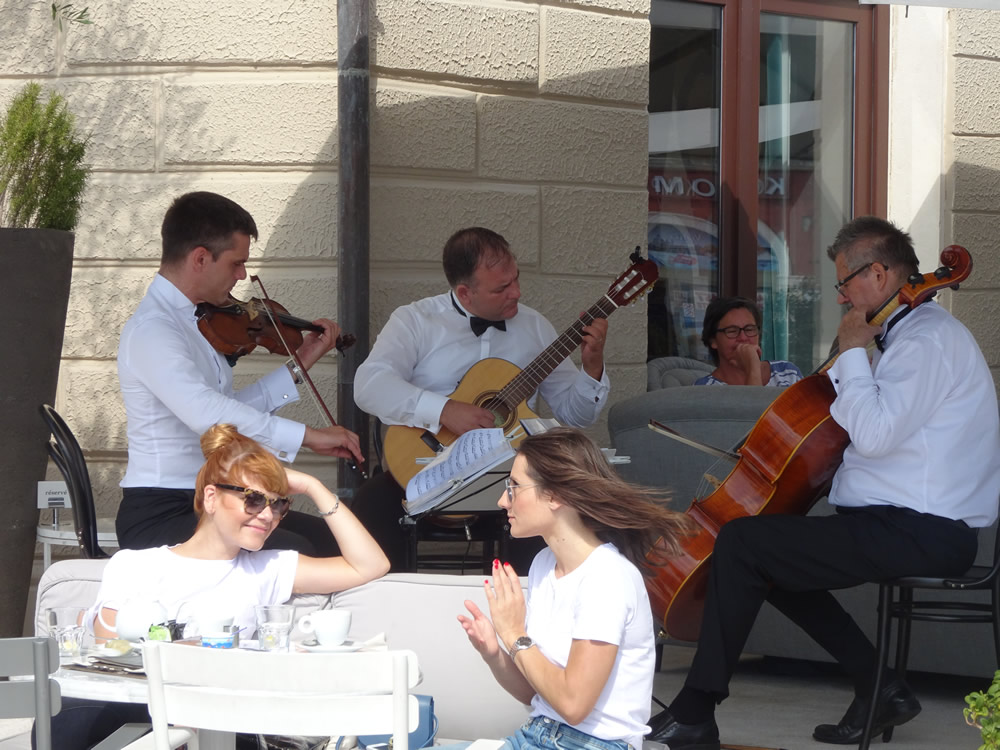 String Trio with Sunday brunch