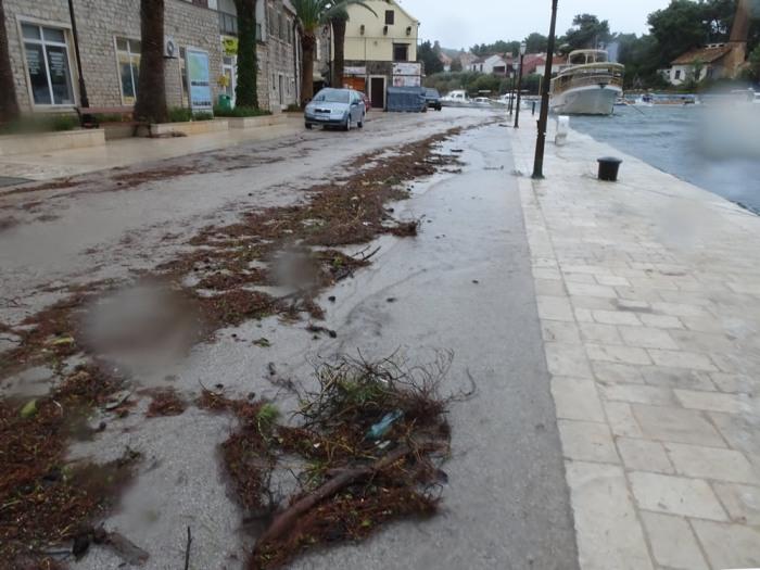 Debris marks high water
