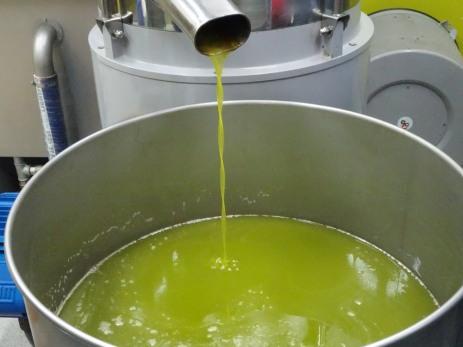 Olive oil!