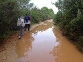 Wet road!
