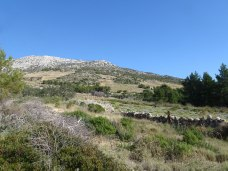 South side slopes