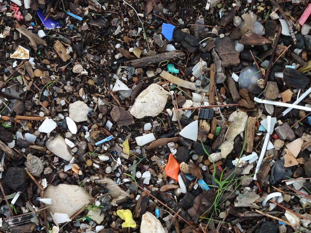 Micro-plastic on the beach
